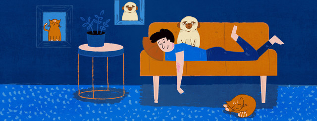 Pets and Eczema…Do They Mix? image