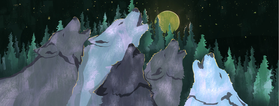 A pack of wolves howling at the moon.